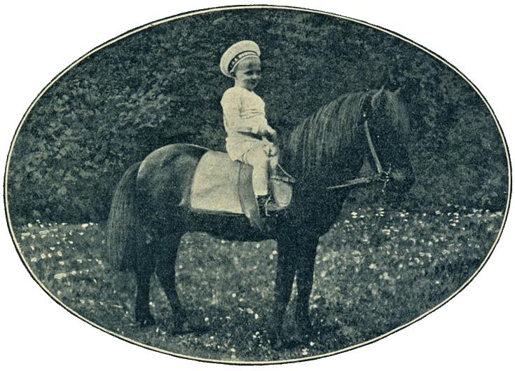 prinz-wilhelm_pony