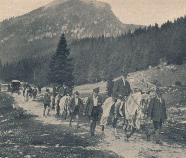 sz08_09-s.1094-prinz-luitpold-hochgebirge