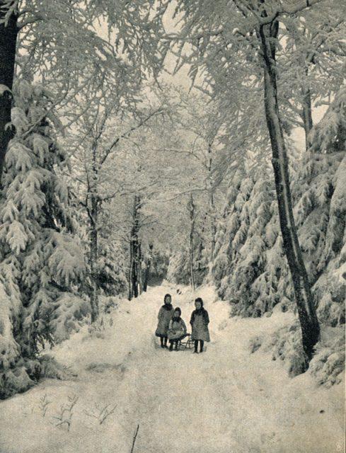 gl-09-s.-1064-madchen-im-winterwald