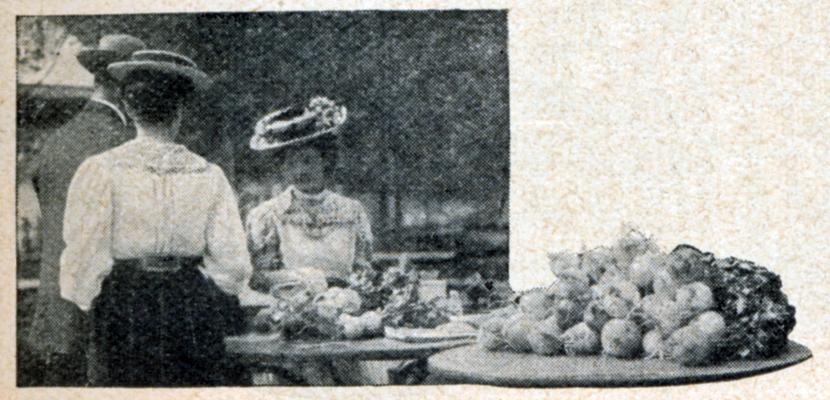 gl-1908-s.845_frau-verkauft-radischen