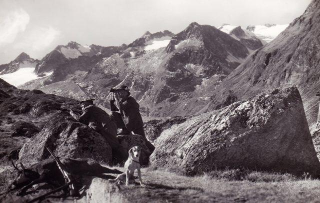 20_tiroler-gamsjger-zillertaler-alpen