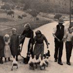 Das Landleben Anfang des 20. Jahrhunderts – eine Einführung